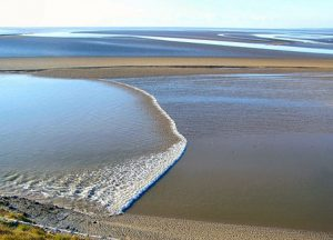Treacherous sands and a tidal bore / en-wikipedia.org